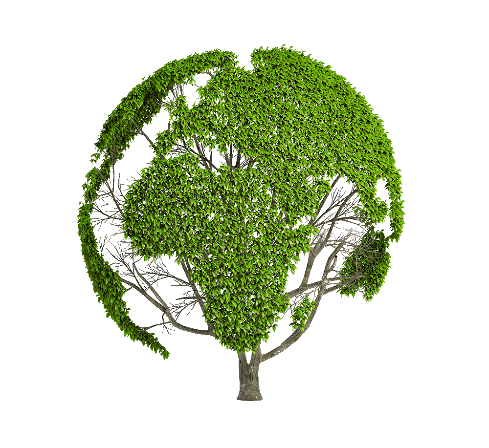 Graphic of a tree with its green leaves making a shape of the Earth.